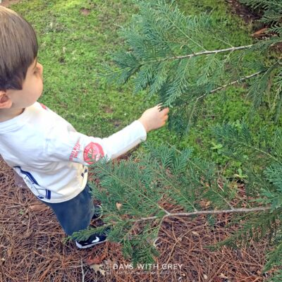 nature hunt for kids