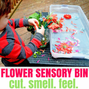 Sweet Smelling Valentine's Sensory Bin