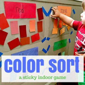 Stuck Inside? Try Sticky Color Sorting!