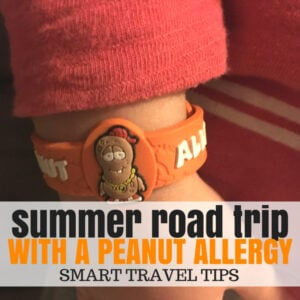 Road Trip Tips, Ideas, and Travel Snacks