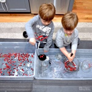 Cranberry Scoop; A Holiday Sensory Bin