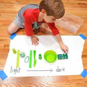 Light to Dark Color Activity