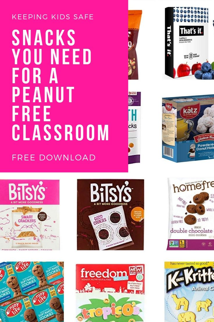 peanut free school snack list