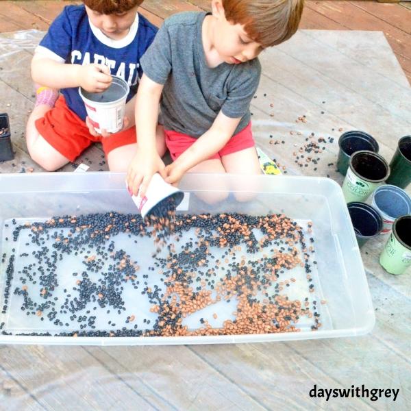 bean sensory bin for preschoolers