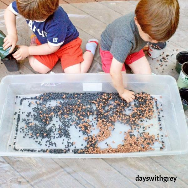 bean bin sensory play for preschoolers